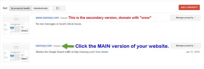 Access website on Google Webmaster Tool Console