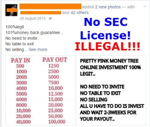Pretty Pink MoneyTree Investment Scam