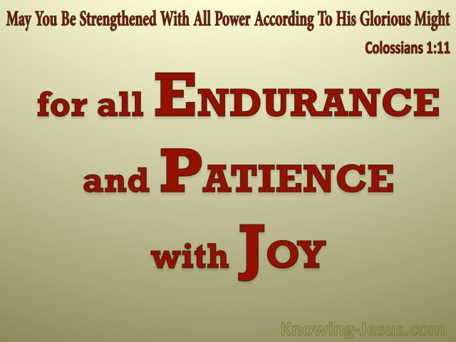 Endurance 1