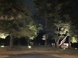 夜の伊勢神宮外宮正門