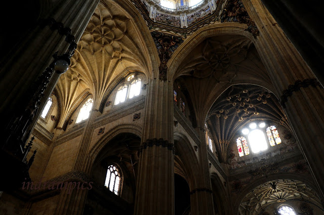 New Cathedral of Salamanca 1