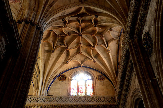 New Cathedral of Salamanca Ceiling 4