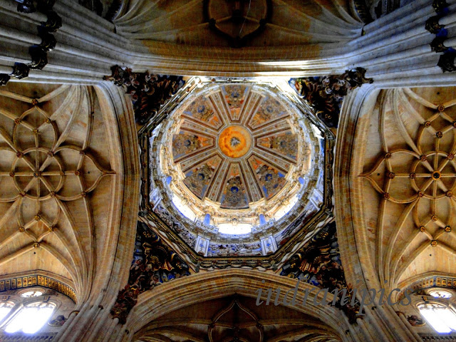 Interiors of New Cathedral Salamanca Celing 1