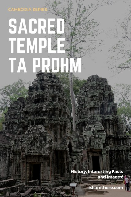 Ta Prohm Cambodia Series