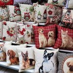 Colorful Cushions wordless wednesday