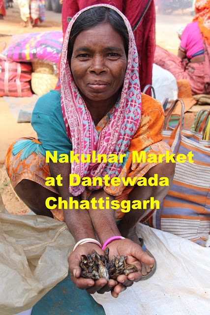 The traditional tribal Nakulnar market of Dantewada is operated by the locals. They call it haat! This lady is selling dried fish.