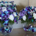 Vases Wordless Wednesday