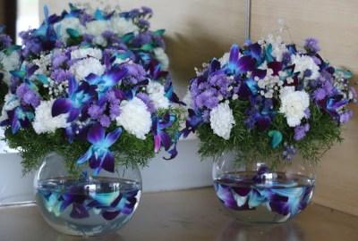 Vases Wordless Wednesday