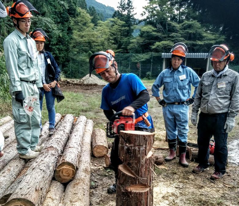 林業に一歩前進!チェーンソーが使えるようになった。林業研修2日目