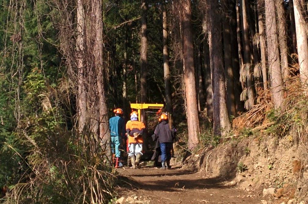 自伐型林業に必須!作業道について学ぼう