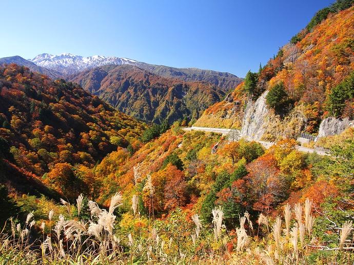 photo by まっさ「秋の白山白川郷ホワイトロード」