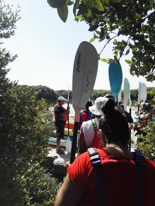 Kayaking in Al Zohra Mangroves with Quest for Adventure