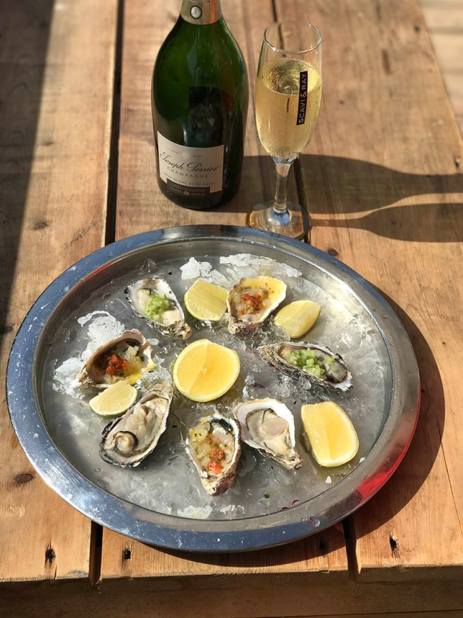 Dibba Bay Oysters with gourmet recipes