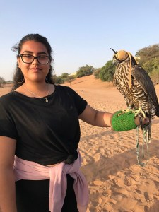 Falconry at sunrise in Al Maha Desert Resort & Spa
