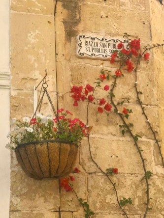 Creepers and flower pots adorn the limestone walls in Mdina