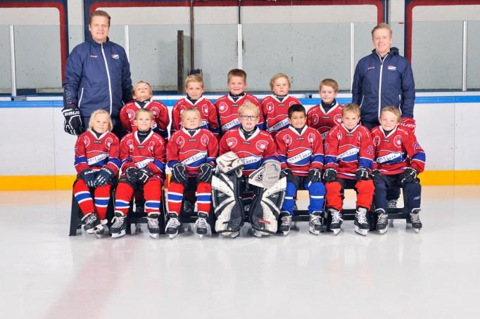 Job: 201617-sport-klubb-Hasle-Løren IL Group: Hasle-Løren Hockey - U8