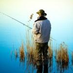 Zurück zu den Basics: Fische, wo die Fische sind!