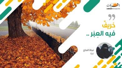 Photo of خريفٌ فيه العبر