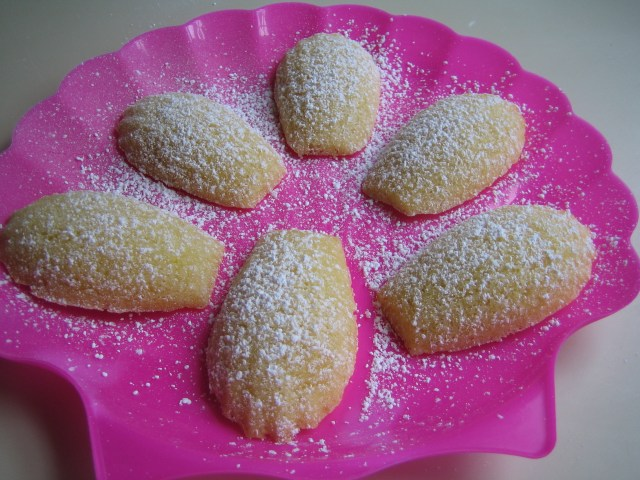 Classic Madeleines