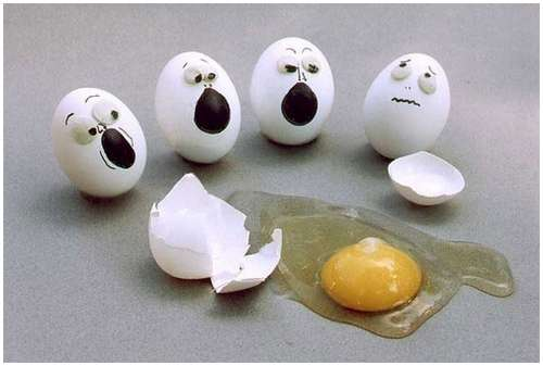 Funny-and-Clever-Egg-Photography-2