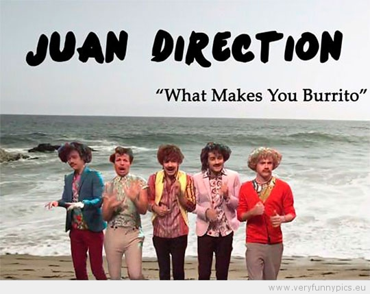 funny-picture-mexican-one-direction-juan-direction-what-makes-you-burrito