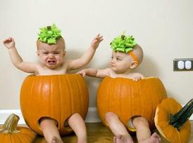 pumpkin-274x204