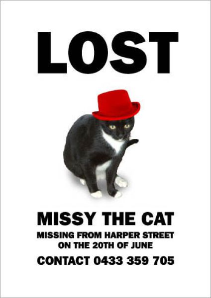hilarious_missing_cat_640_20