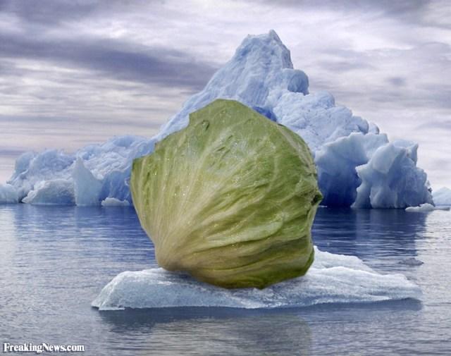 Iceberg-Lettuce--16896