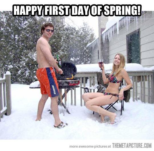 funny-barbacue-snow-spring-winter