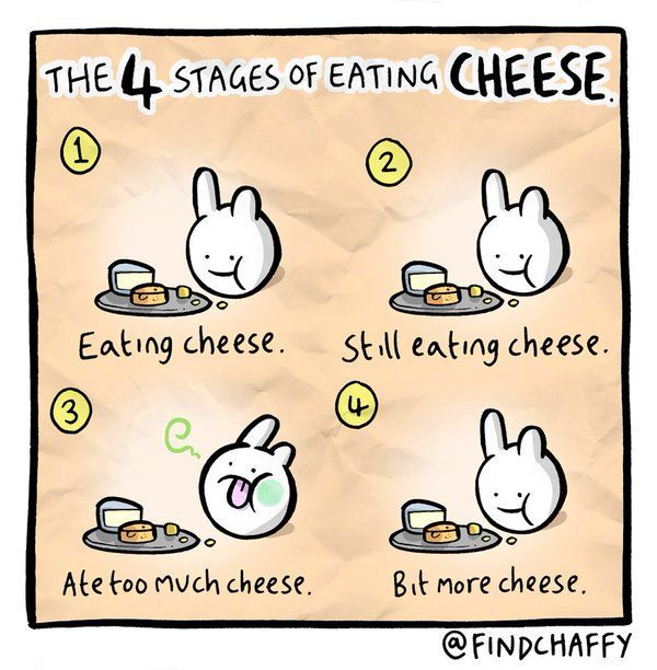 Funniest_Memes_the-4-stages-of-eating-cheese_11644