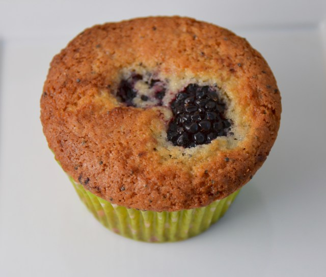Blackberry Poppy Seed Muffins