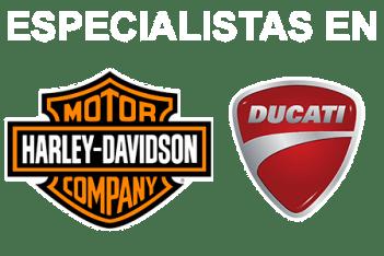 Especialistas en Harley y Ducati