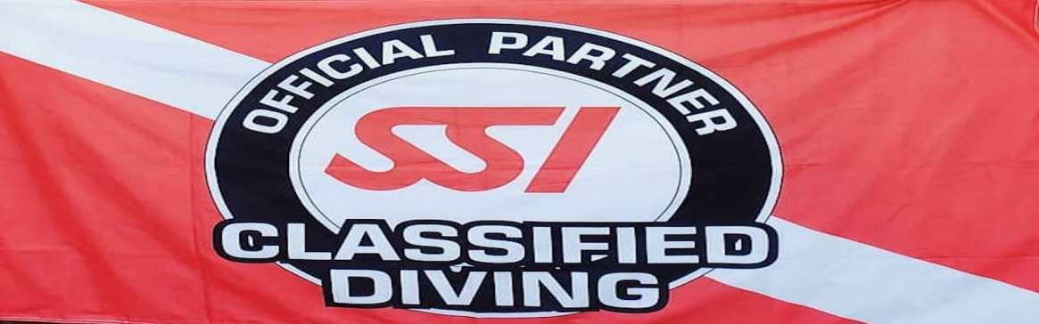 Classified Dive Program