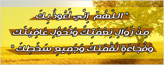 1239930_10151642117686226_961039242_n