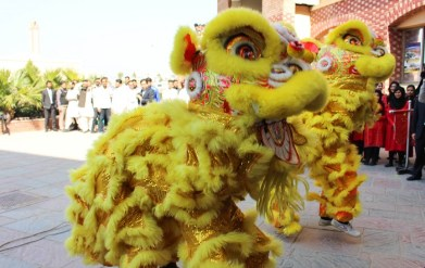 Chinese lion dance performance at China Culture Day event at COMSATS University in Islamabad on 24 February 2016. Photo by Sana Jamal