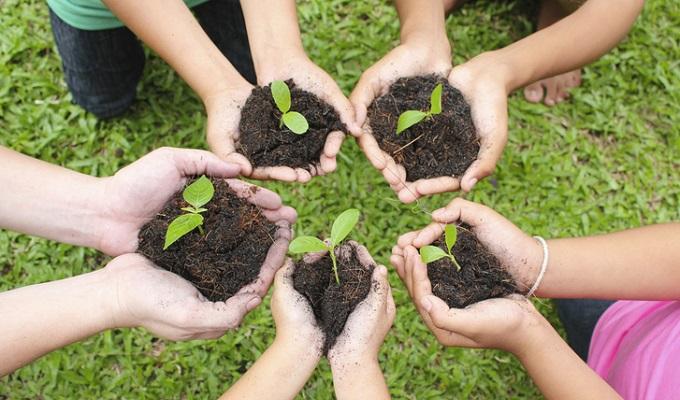 Islamabad to plant 10 million trees