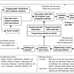 Labelled Diagram Of Agama Lizard Triangular For Liquid Extraction Bagaimana Cara Allah Berbuat Di Alam Semesta Ini Islam
