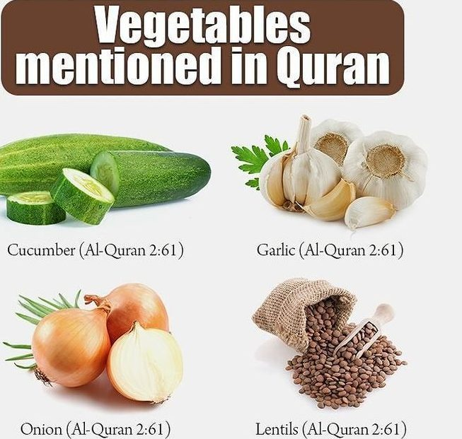 Sunnah recommended food in Pregnancy - Islam Hashtag