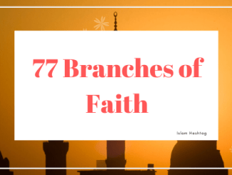 77 branches of Faith