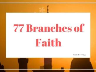 77 branches of Faith