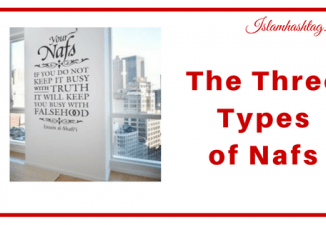 The 3 types of Nafs People have- nafs-e-ammara, nafs-e-lawwama and nafs-e-mutmainna.
