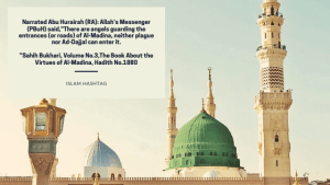 no plague in madina