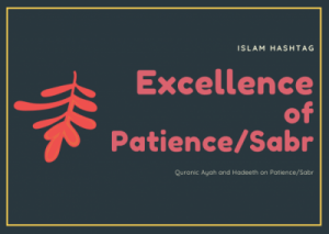 Quranic ayah on patience