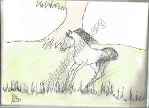 Horse Illustration by Wardah - Islamic Illustrations by Kids