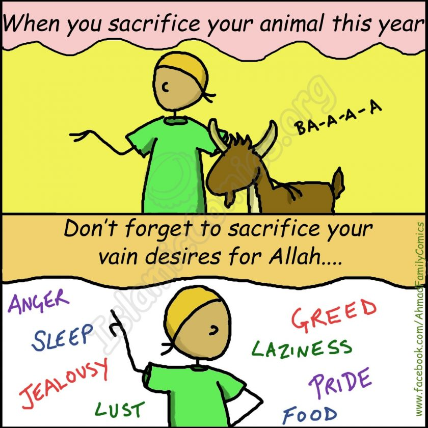 Before Your Sacrifice Your Animal this Eid ul Adha - Islamic Comics