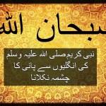 نبی کریمصلی اللہ علیہ وسلمکی انگلیوں سے پانی کا چشمہ نکلانا
