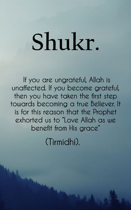 Shukr - Islamic Quotes in Englsih