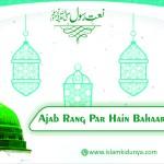 Ajab Rang Par Hain Bahaar E Madina