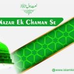 Nazar Ek Chaman Se Do Chaar Hai