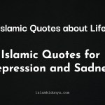 Islamic Quotes about Life – {Islamic Quotes for Depression and Sadness}